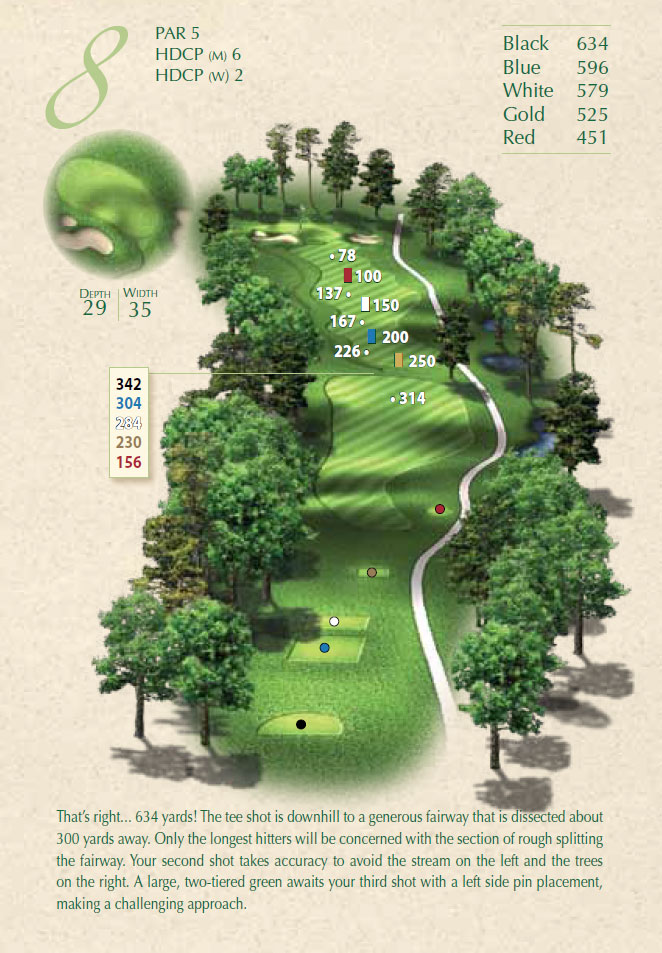 Overview of hole 8